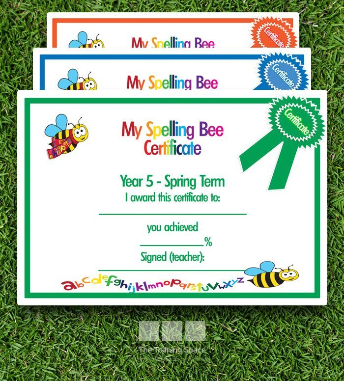 The Spelling Bee Years 1 To 6 The Training Space